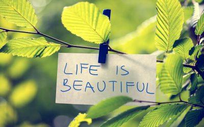 Viata este despre tine, asa ca profita de acest lucru